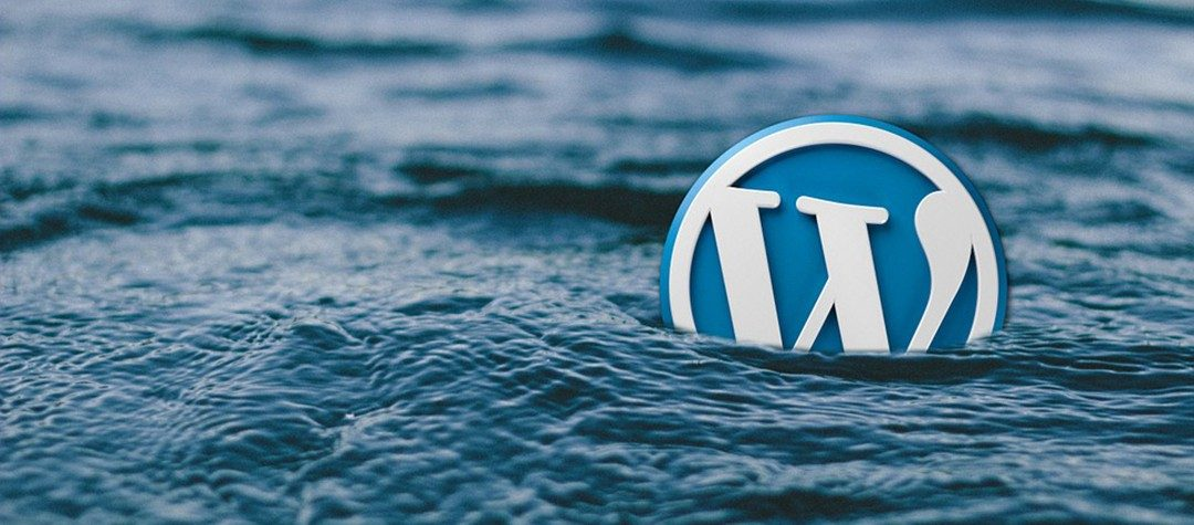 WordPress is best. Why?